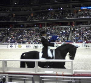 Not the greatest image, but dressage from 2007